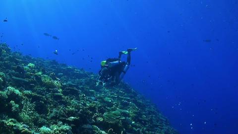 Rebreather diver on a coral reef ภาพวิดีโอ