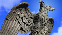double eagle guard Footage