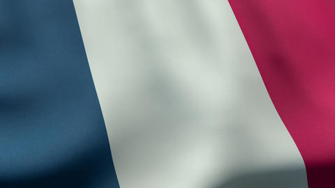 4K UltraHD Loopable waving French flag animation Stock Video Footage
