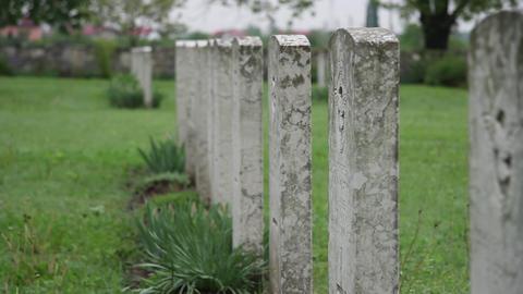 Militar cemetery 31 Footage