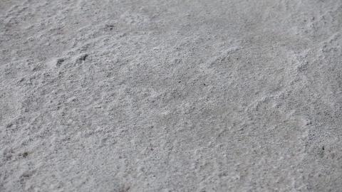 dried sea salt Footage
