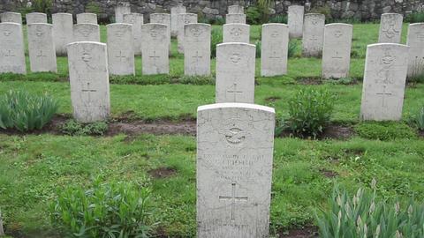 Militar cemetery 28 Footage