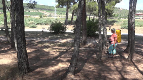 Pilgrim on the Camino de Santiago 61 Footage
