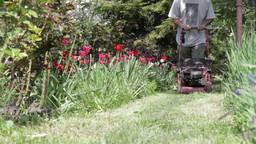 Lawnmower in action 02 Footage