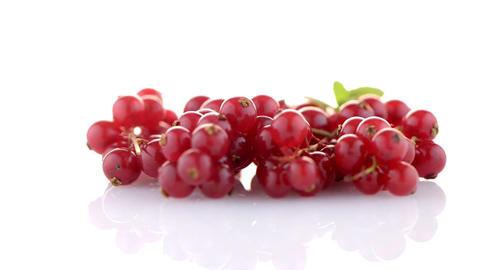 Red Currants Footage