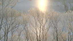 Two Winters stock footage