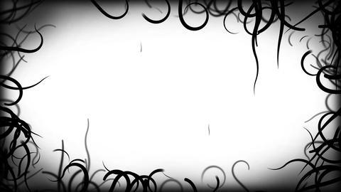 Black Vines Border Background Animation - Loop White Animation