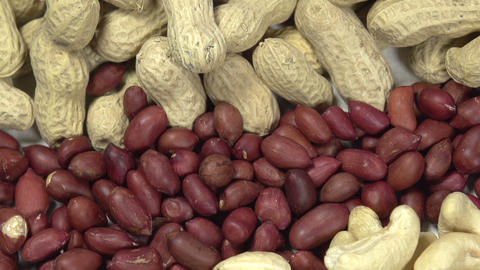Varieties of Nuts Footage