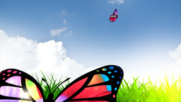 Spring Fantasy With Butterflies stock footage
