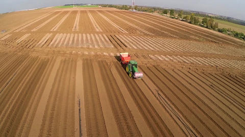 Tractor harvesting the field Footage