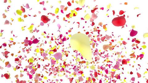 Flower petals pink fountain A 4 K CG動画