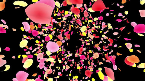 Flower petals pink front Ab 4 K Animation