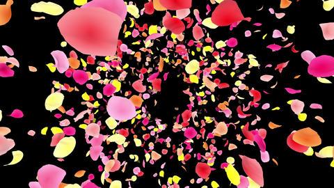 Flower petals pink front Ab 4 K CG動画