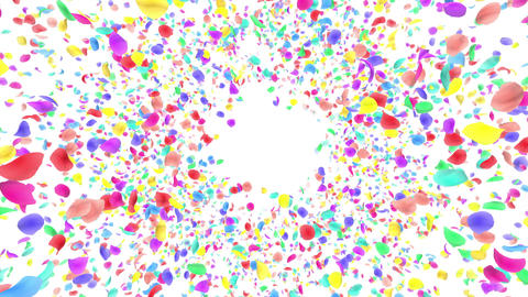 Flower petals rainbow front B Cw 4 K Animation