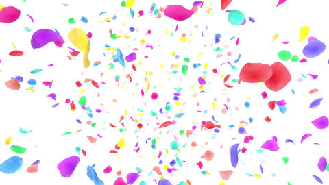Flower petals rainbow front Dw 4 K Animation