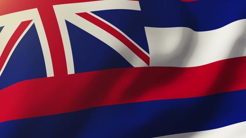 Hawaii flag waving in the wind. Looping sun rises style. Animation loop Animation