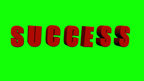 Success Dance (Green Screen) Animation