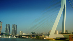 The Erasmus Bridge links diferent regions of Rotterdam Footage