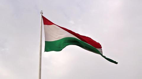 Tajikistan flag. Dushanbe, Tajikistan. 1280x720 Footage