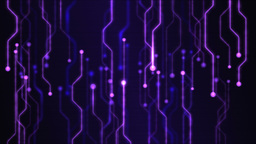 Abstract Technology Circuit Background Animation - Loop Purple GIF