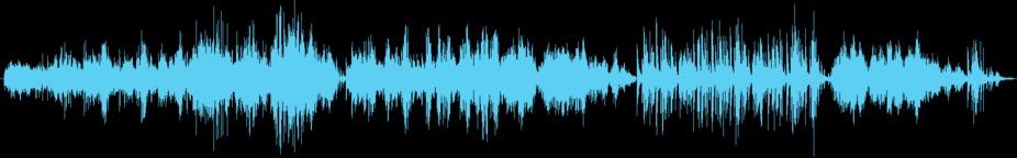 Chopin Andante Spianato Music