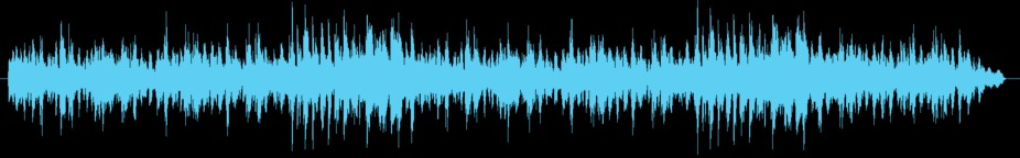 Wonderment long Music
