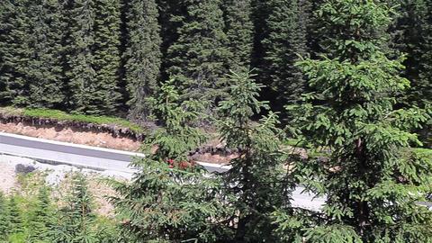 Traffic 82 Stock Video Footage