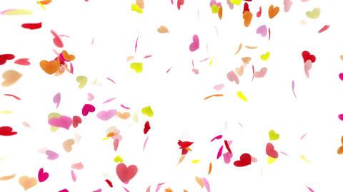 Heart petals pink front Dof 4k Stock Video Footage