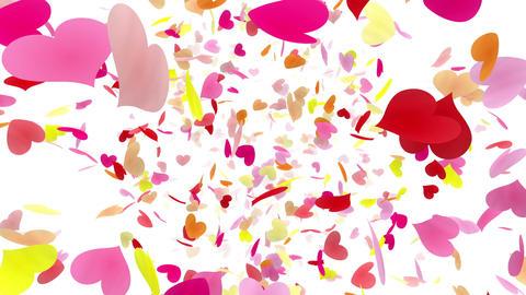 Heart petals pink front Dw 4k CG動画