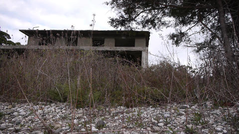 Abandoned Building in Bush 3 Stock Video Footage