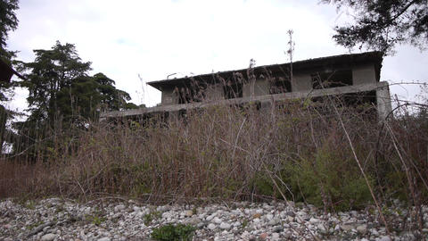 Abandoned Building in Bush 4 Stock Video Footage