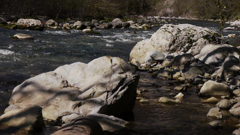 Mountain River among Trees and Stones in Gorge 8 Stock Video Footage