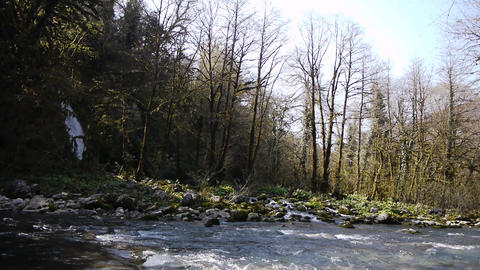 Mountain Waterfall and River in Gorge 2 Stock Video Footage