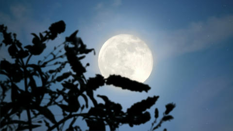 Moonrise stock footage
