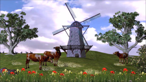 Milk Product Promotion Cow on Beauty Grass Landscape Footage