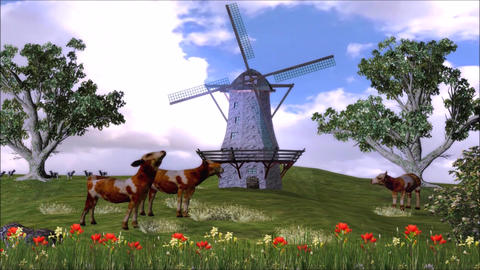 Milk Product Promotion Cow on Beauty Grass Landscape Stock Video Footage