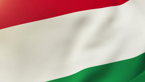 Hungary flag waving in the wind. Looping sun rises style.... Stock Video Footage