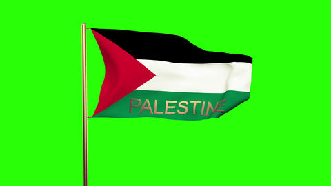 Palestine flag with title waving in the wind. Looping sun rises style. Animation Animation