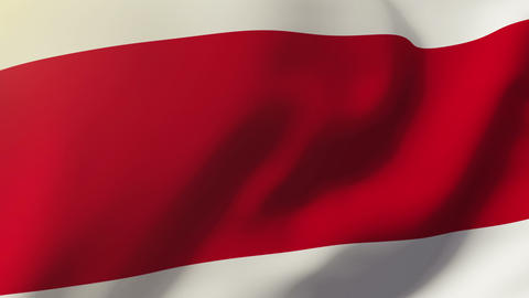 Costa Rica flag waving in the wind. Looping sun rises style. Animation loop Animation