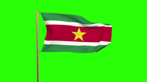 Suriname flag waving in the wind. Green screen, alpha matte. Loopable animation Animation
