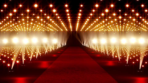 On The Red Carpet 03 Stock Video Footage