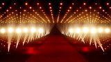 On The Red Carpet 03 stock footage