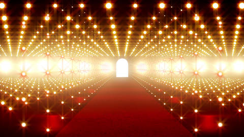 On The Red Carpet 09 Stock Video Footage