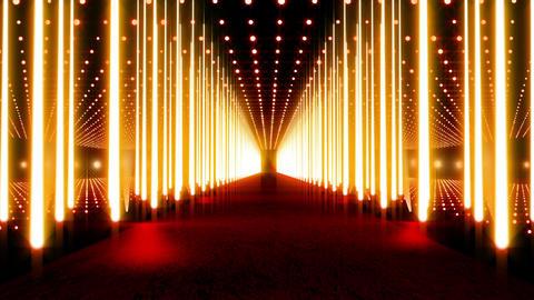 On The Red Carpet v2 06 Animation