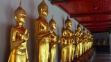Golden Buddha Statues Footage