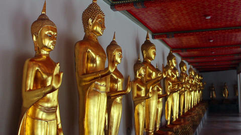 Golden Buddha Statues Live Action