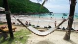 empty hammock in an exotic beach Footage