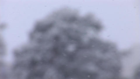 snow 2 Stock Video Footage