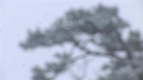 snow 4 Stock Video Footage