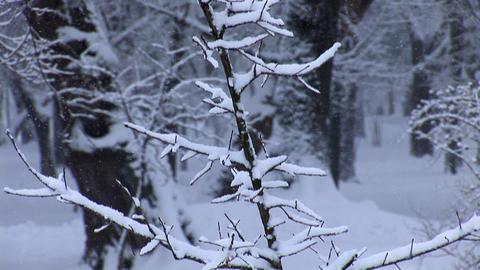 snow 8 Stock Video Footage